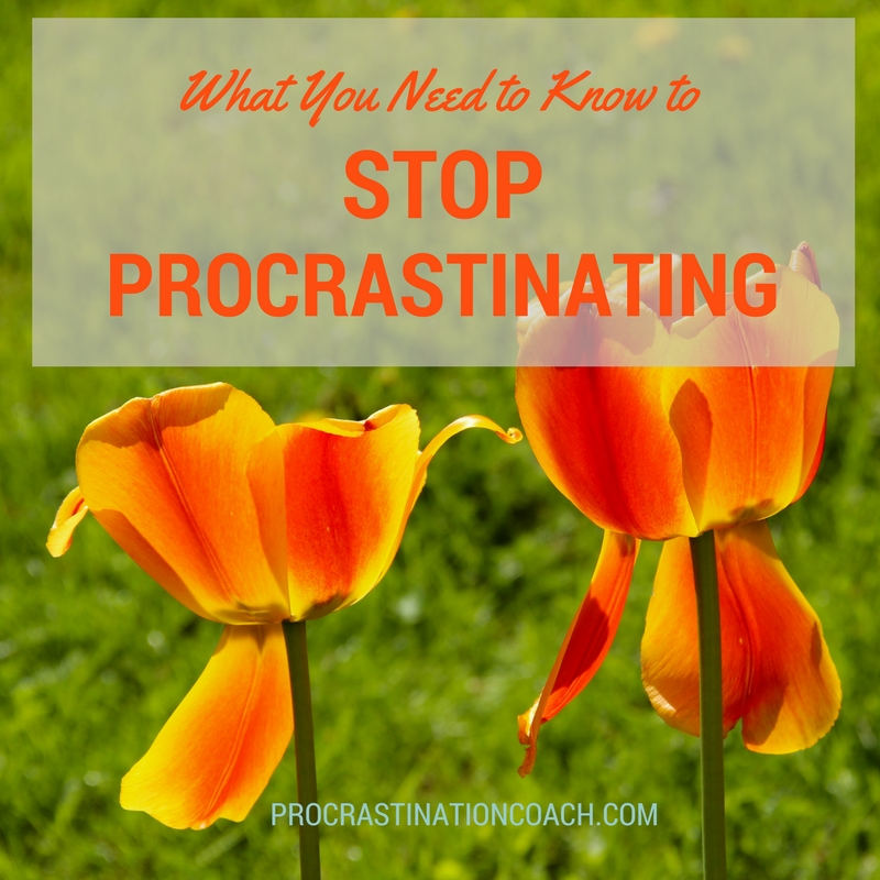 What you need to know to stop procrastinating